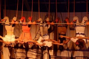 Viva o Circo - Circo Picolino-7
